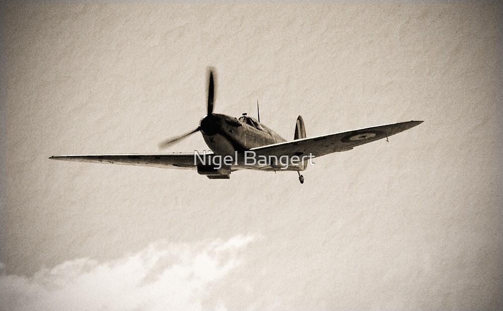 Memorial Flight by Nigel Bangert