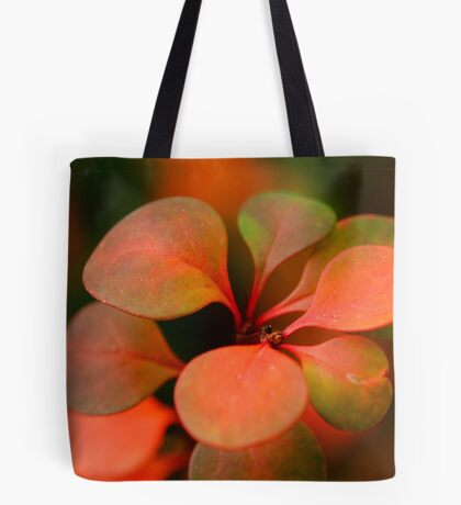 Soft Winter Colours Tote Bag