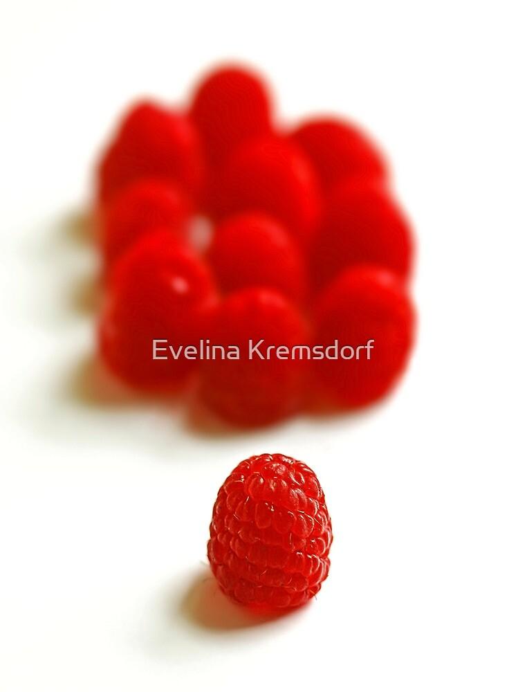 Red Army by Evelina Kremsdorf