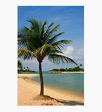 Palm Beach Paradise Photographic Print