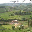 Beaujolais Wine Region by Vanessa Semmens