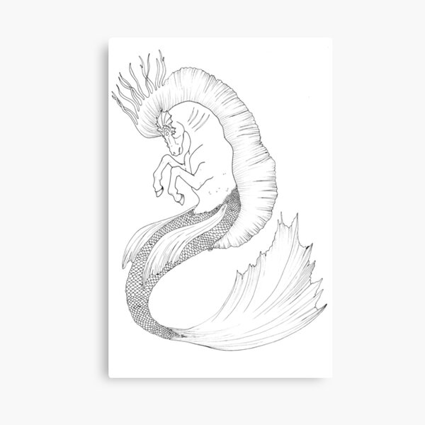 Hand Drawn Fantasy Hippocamp Canvas Print