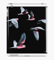 Night Flight iPad Case/Skin