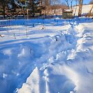 Waist deep in garden snow by Owed To Nature