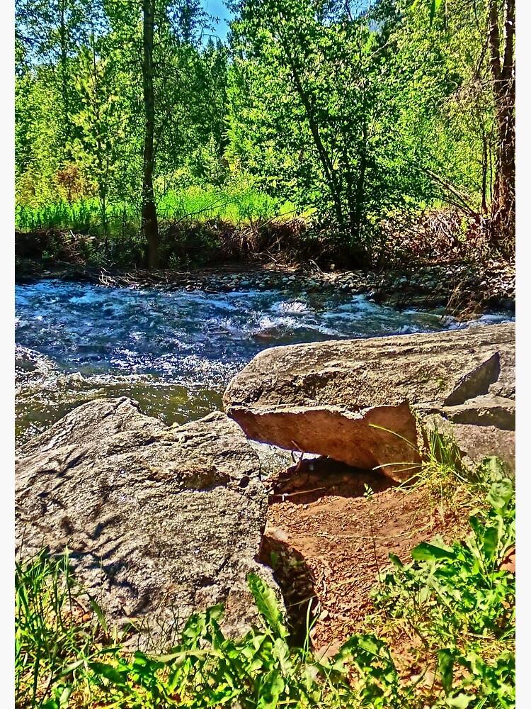 Roaring Fork River, Aspen No. 4 by 32DARTS