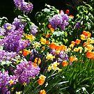 «Lila y tulipanes» de Charmiene Maxwell-Batten