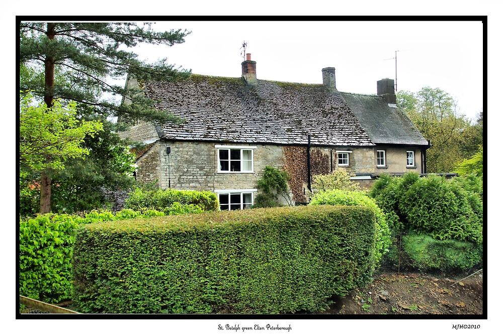 Cottage St.Bololph Green Elton by mickyman13