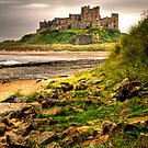 Bamburgh Castle by Brian Tarr