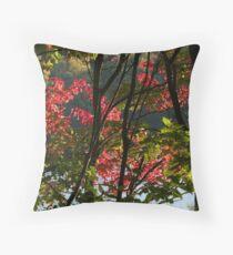 Arrowhead Park, Muskoka, On Throw Pillow