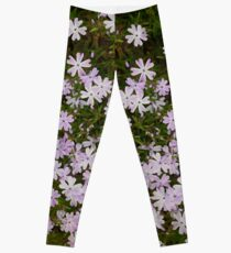 Green and Purple Watercolor Floral Pattern Leggings