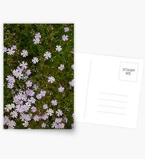 Green and Purple Watercolor Floral Pattern Postcards