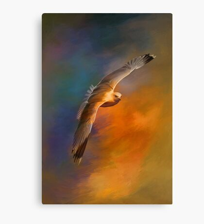 Freedom.... Canvas Print