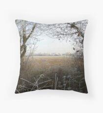 Framed Winter Throw Pillow