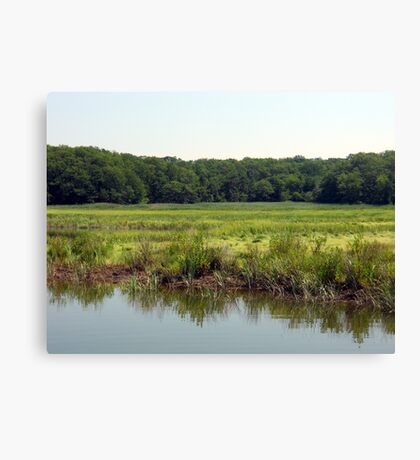 Cheesequake River Canvas Print