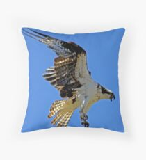 Screaming Osprey Coming In  Throw Pillow