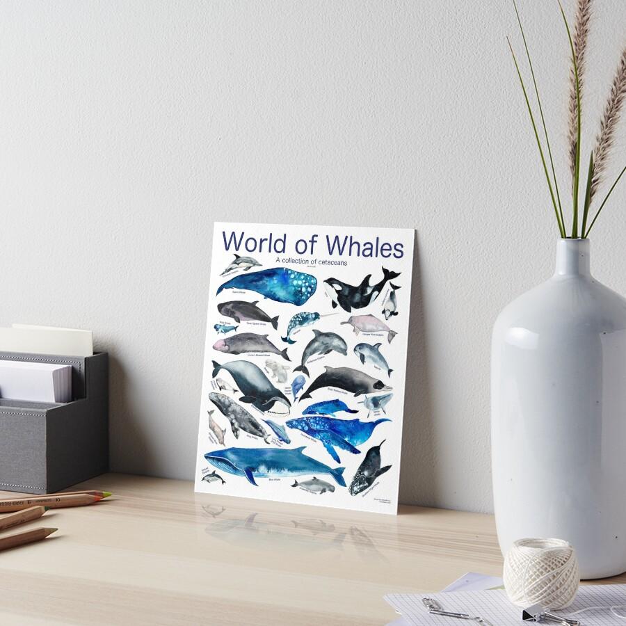 World of Whales Art Board Print