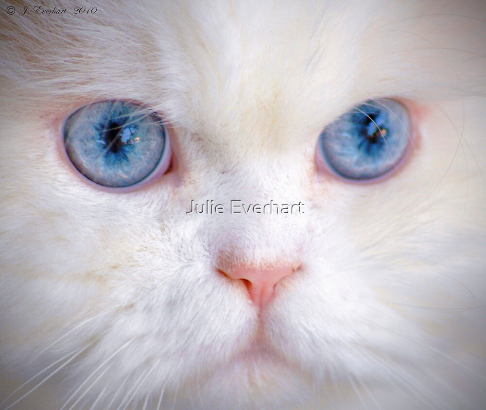 His Eyes Are Like the Sea to My Soul by Julie Everhart
