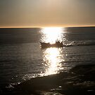 coming home. fishing boat tasmania by tim buckley   bodhiimages