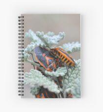 Horehound Bug Spiral Notebook