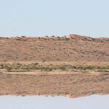 Desert flood reflection... by A1000WORDS