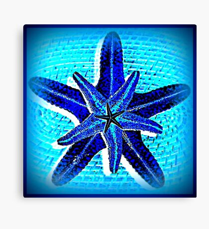 Starfish in blue Canvas Print