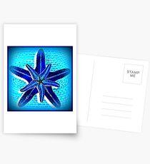 Starfish in blue Postkarten