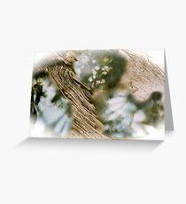 organics Greeting Card