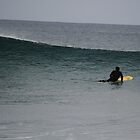 Surfing at Torquay  by KarynL