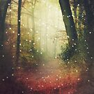 Forest of Miracles and Wonder by Dirk Wuestenhagen