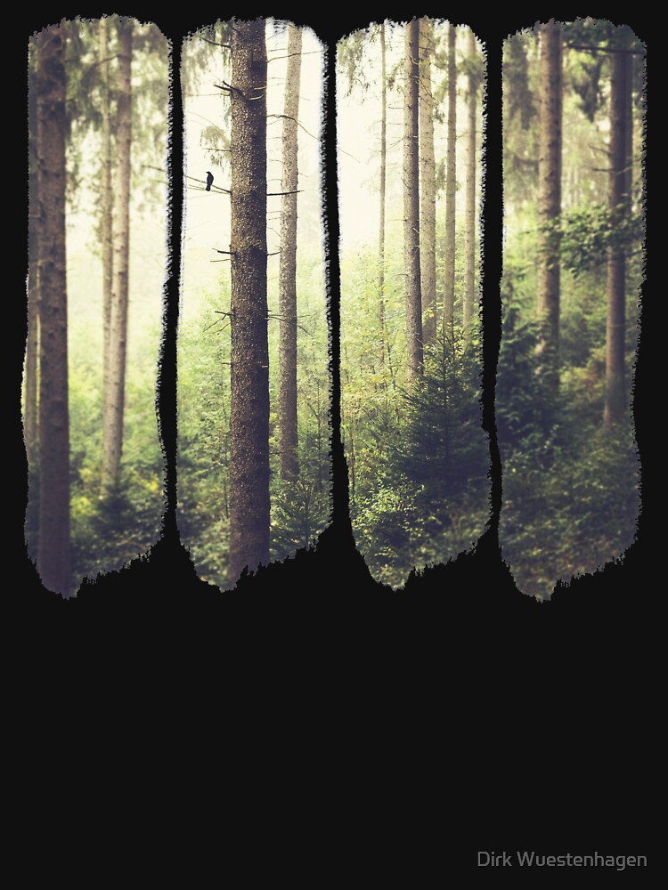 Morning Song - Misty Forest by DyrkWyst