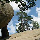 Living on the Rock by Elena Skvortsova