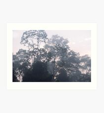 The mysteries of the morning mist Art Print