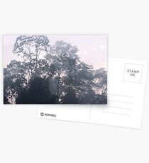 The mysteries of the morning mist Postcards