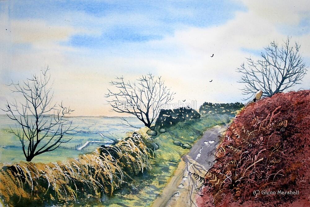 Path toSutton Bank, North Yorkshire by Glenn Marshall
