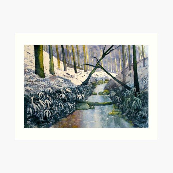 Dane's Dyke after snow Art Print