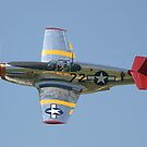 "P51-C Mustang: ""INA The Macon Belle"" by Pirate77"
