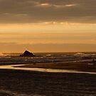 Arthur River sunset by Christine Beswick
