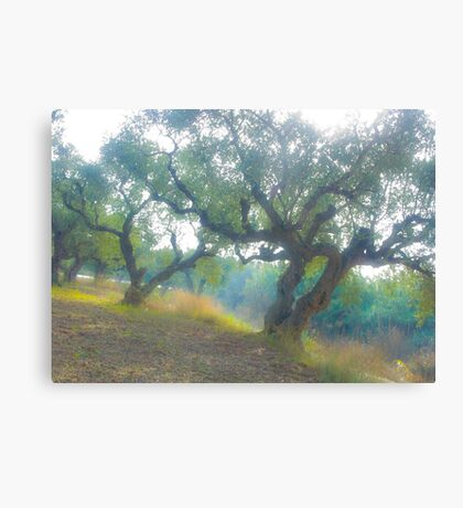 Views 3954***Olive trees. Zakintos. Greece. by Doctor Andrzej Goszcz.   Thanks  friends !!! Featured in Avant~Garde Art . Thanks !  Canvas Print