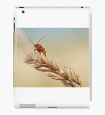 Common Red Soldier Beetle iPad Case/Skin
