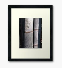 harmony to two Framed Print