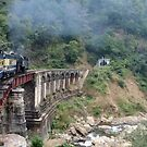 Ooty Steam Train - Ooty by clarebearhh