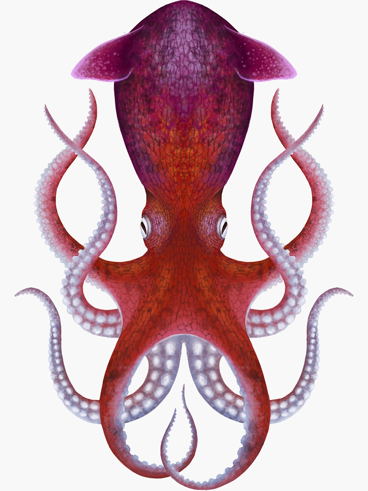 Palaeoctopus by franzanth