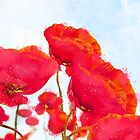 Morpheus' Garden Red Poppy Golden Pollen watercolor floral art by Glimmersmith