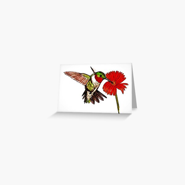 Humming Bird and Flower Greeting Card (Blank) Greeting Card