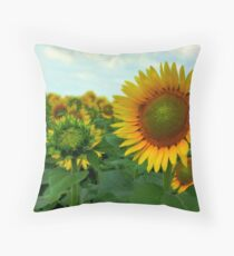 Good Mornin' Sunshine Throw Pillow