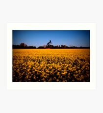 Alberta Fields Art Print