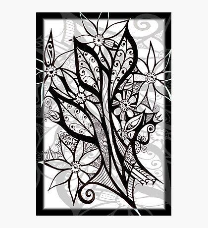 Petal Patterns in Black and White Photographic Print
