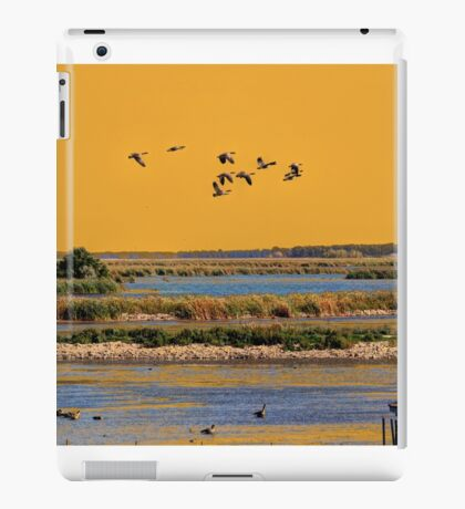 Early Morn on the Marsh iPad Case/Skin