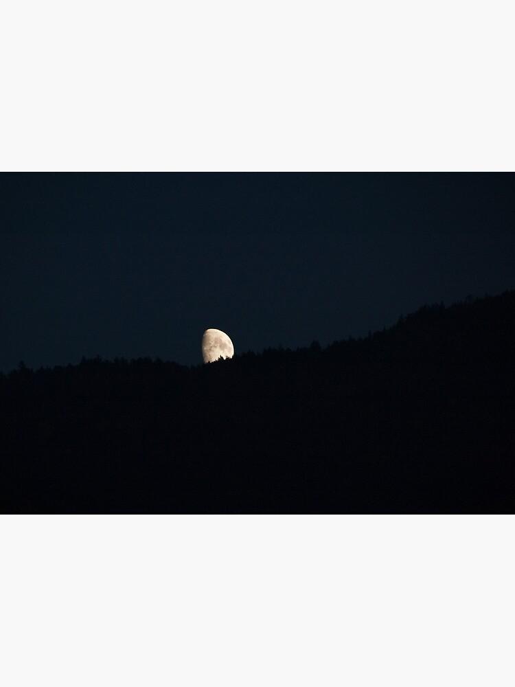 Moon peering over the hillside, Bolzano/Bozen, Italy by leemcintyre
