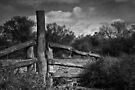 Bronko Rail by Craig Hender